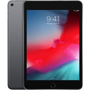Apple iPad mini 64GB Wi-Fi vesmírně šedý (2019)